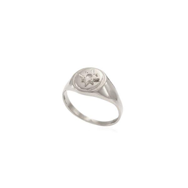טבעת חותם בצבע כסף