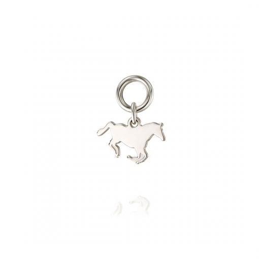 צ'ארם סוס 925