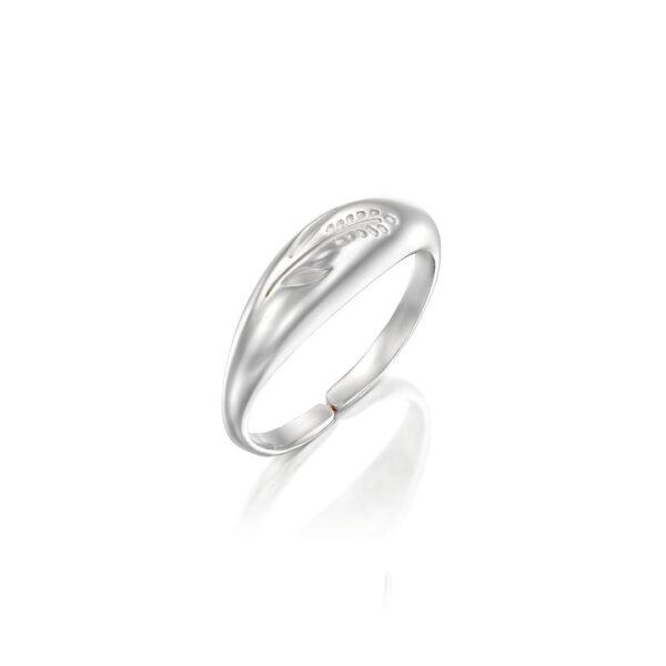 טבעת ואלי